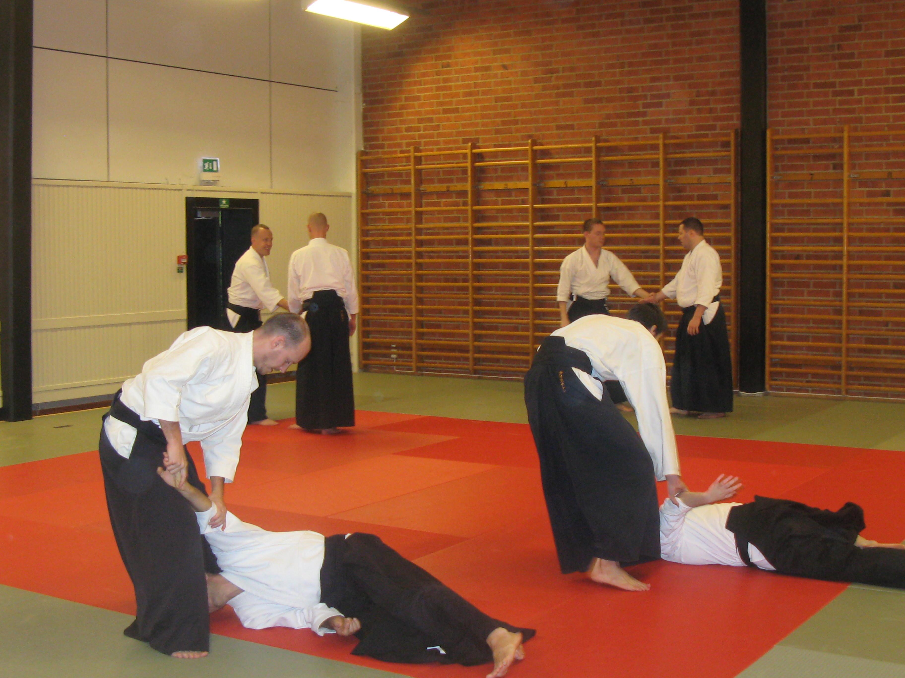aikido 2014 087