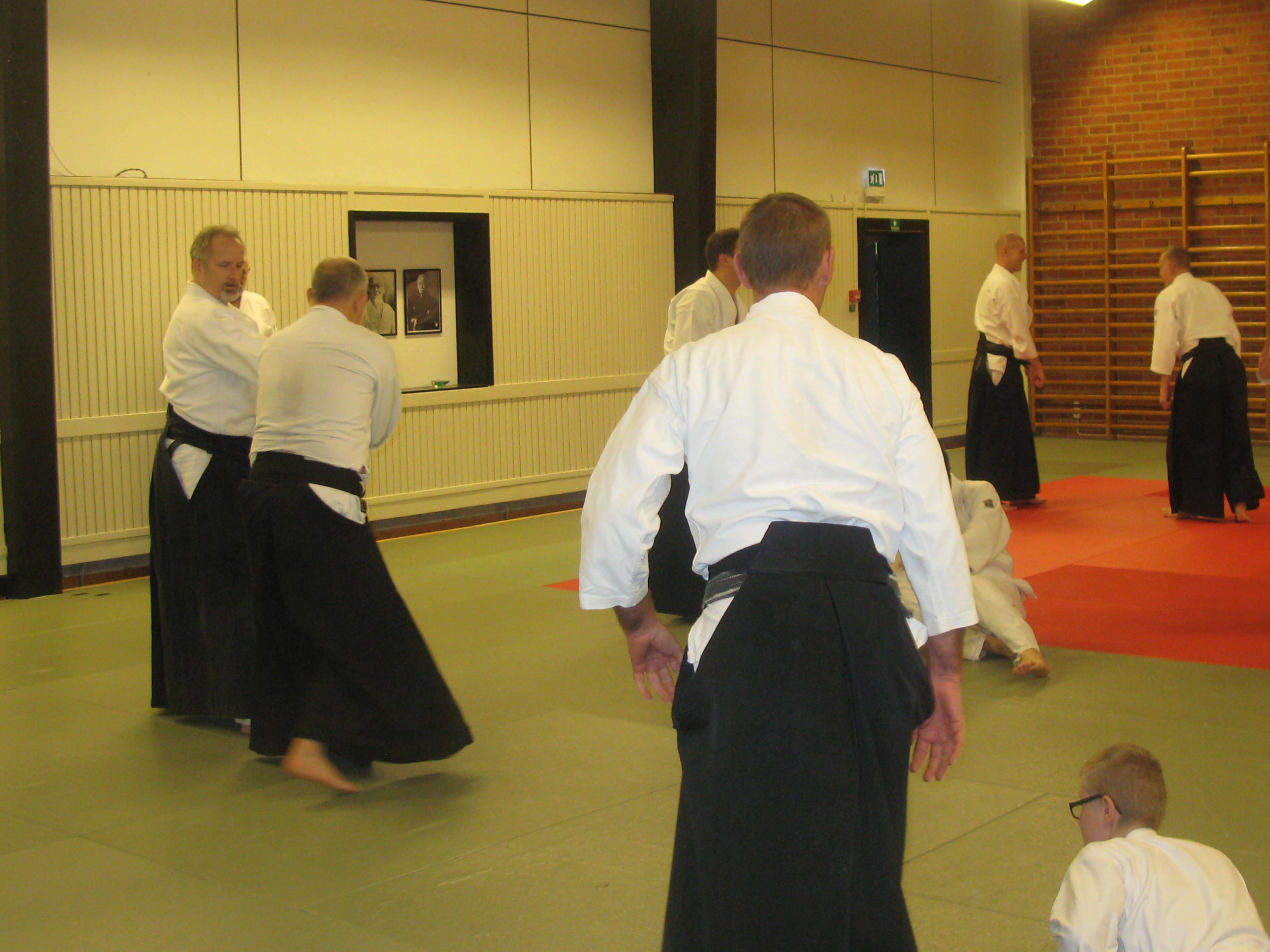 aikido 2014 088