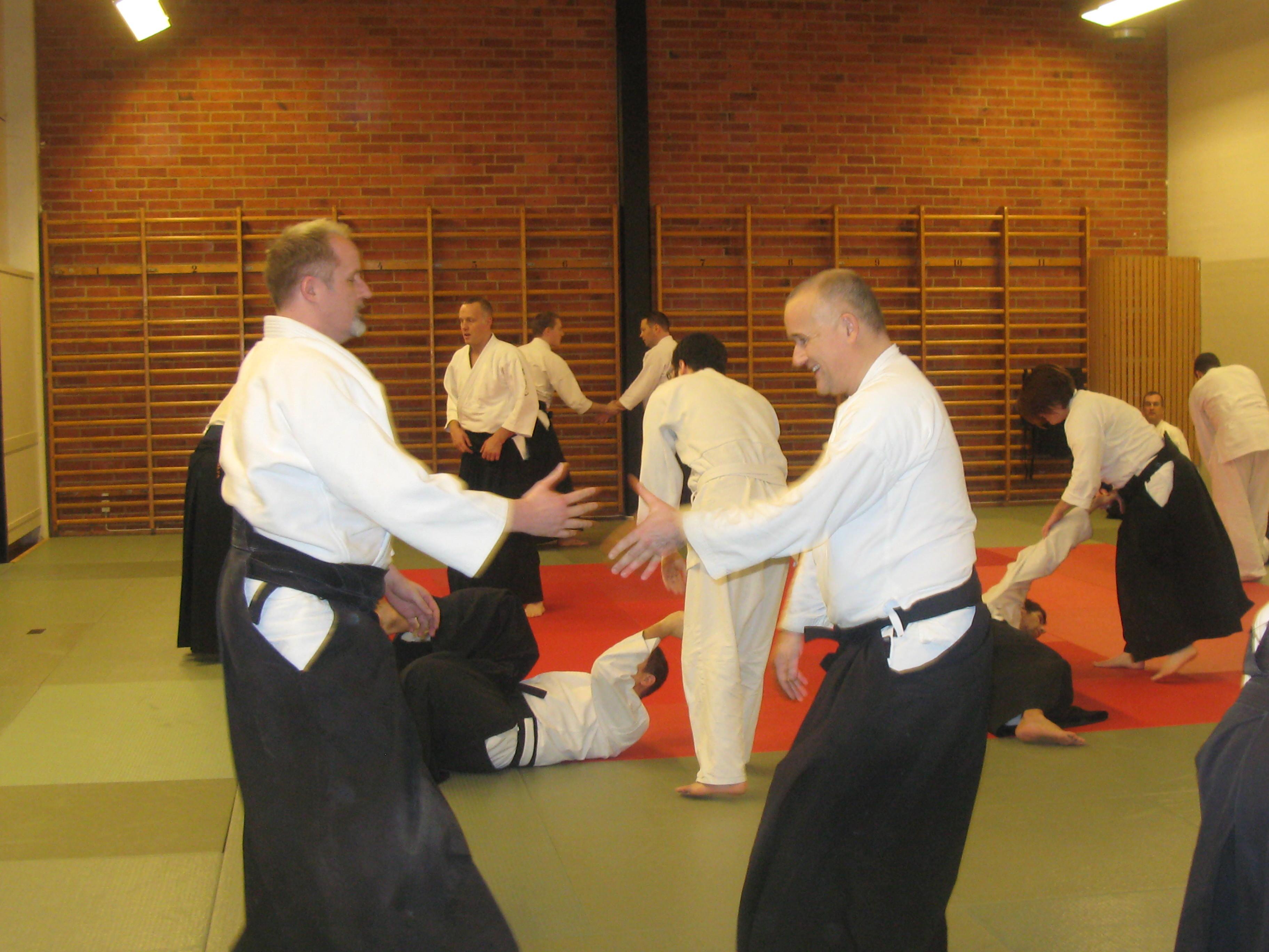 aikido 2014 090